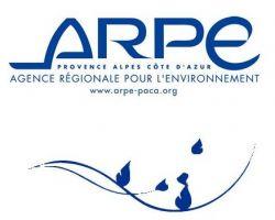 arpepaca-faf3c011